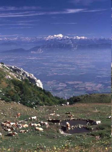 Vers Les Alpes